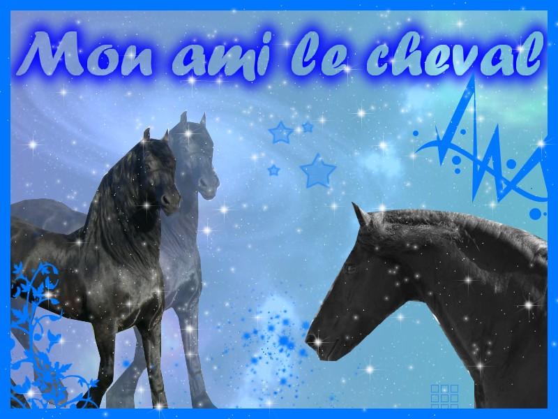 Mon Ami Le Cheval Index du Forum