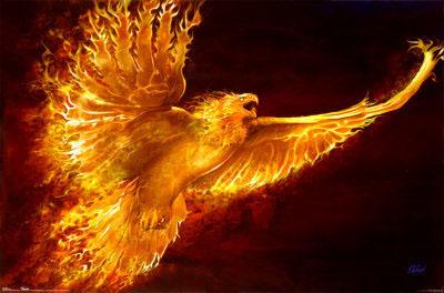 légion phoenix Index du Forum