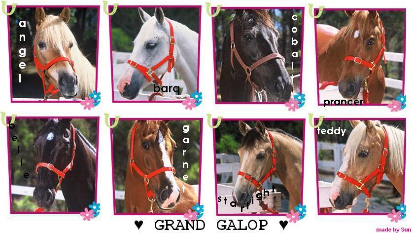 Les chevaux le club du grand galop - Grand galop le cheval volant ...