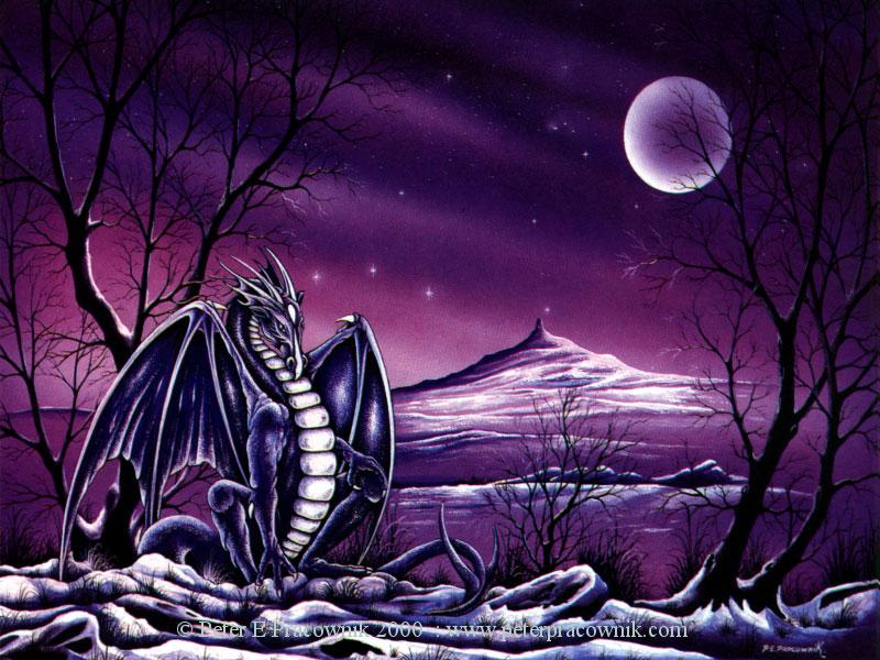 Les Douzes Dragons Index du Forum